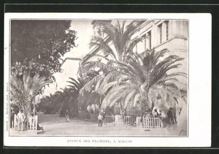 Ajaccio avenue des palmiers lacorsedantan (1)