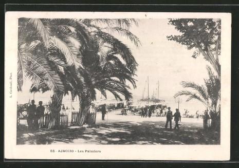 Ajaccio avenue des palmiers lacorsedantan (5)