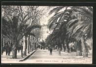 Ajaccio avenue du Premier Consul lacorsedantan.com - Copie (2)