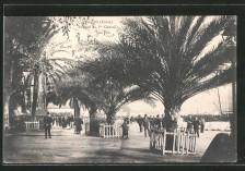 Ajaccio avenue du Premier Consul lacorsedantan.com - Copie (3)