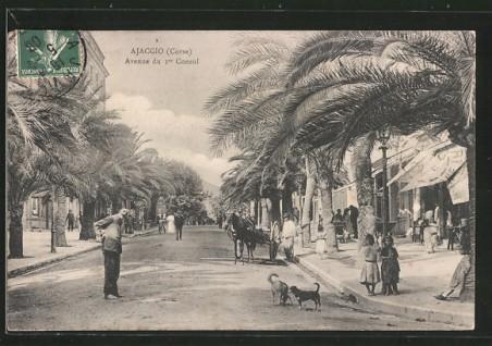 Ajaccio avenue du Premier Consul lacorsedantan.com
