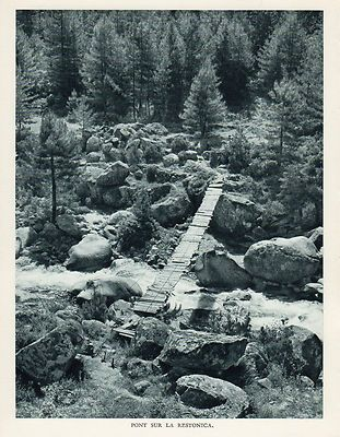 pont sur la restonica.jpg