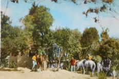 Ranch de la Bravona 1