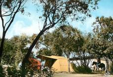 Ranch de la Bravona 2