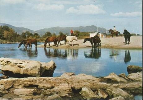 Ranch de la Bravona3