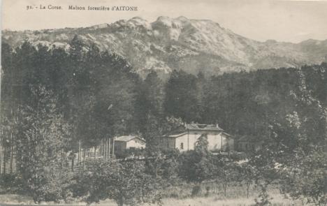 Maison forestiere d aitone corse